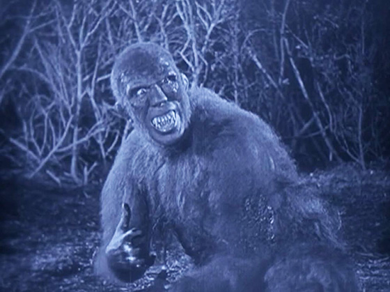A sinister ape-man is shot in the arm by the expedition.