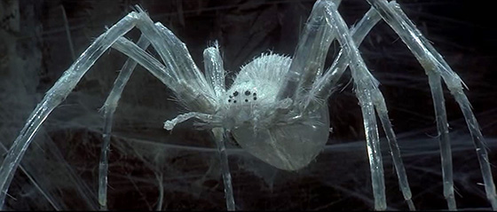 The Crystal Spider, guarding the Widow of the Web.