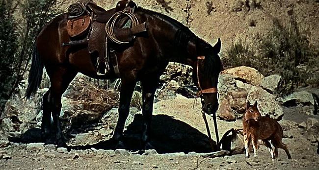 """The Valley of Gwangi"": Horse, meet Eohippus."